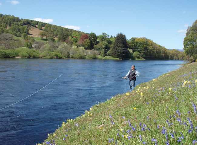 Late Spring Is A Very Beautiful Time Of The Scottish Season To Be On The River